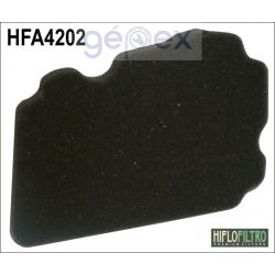 HIFLOFILTRO HFA4202