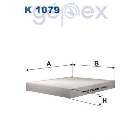FILTRON K1079